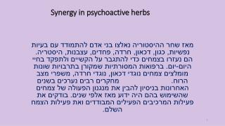 Synergy  in psychoactive herbs