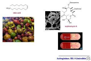 Acétogénines. III.1 Généralités