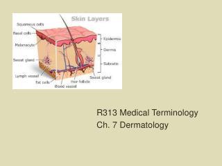 R313 Medical Terminology Ch. 7 Dermatology