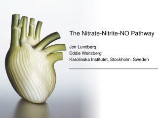 The  Nitrate-Nitrite-NO Pathway Jon Lundberg Eddie Weitzberg