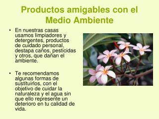 Productos amigables con el Medio Ambiente