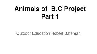 Animals of  B.C Project Part 1