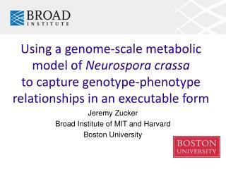 Using a genome-scale metabolic model of  Neurospora crassa