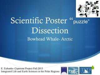 "Scientific Poster "" puzzle""  Dissection"