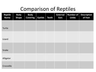 Comparison of Reptiles
