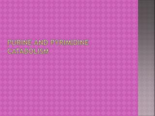 Purine and pyrimidine catabolism
