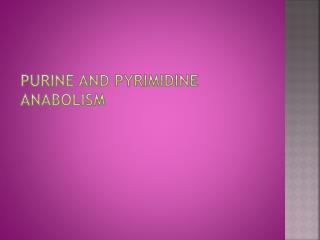 Purine and Pyrimidine anabolism