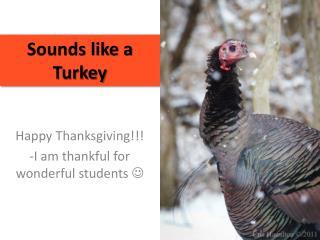Sounds like a Turkey