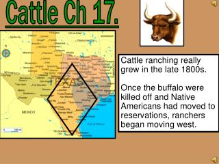 Cattle Ch 17.