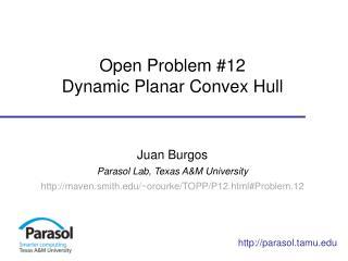 Open Problem #12 Dynamic Planar  Convex Hull
