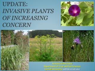 Update :  invasive PLANTS  of increasing  concern