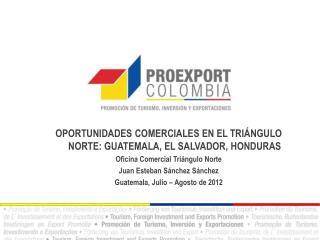 OPORTUNIDADES COMERCIALES EN EL TRI�NGULO NORTE: GUATEMALA, EL SALVADOR, HONDURAS
