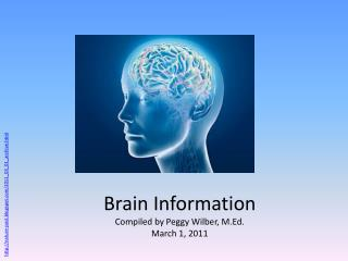 Brain Information Compiled by Peggy Wilber, M.Ed. March 1, 2011