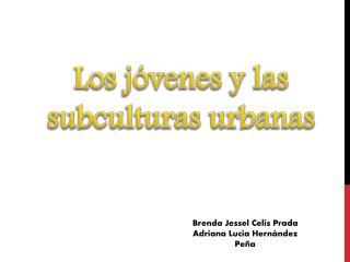Los jóvenes y las subculturas urbanas
