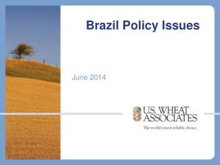 Brazil Policy Issues