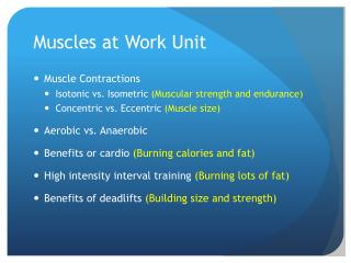 Muscles at Work Unit