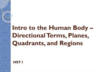 Intro to the Human Body – Directional Terms, Planes, Quadrants, and Regions