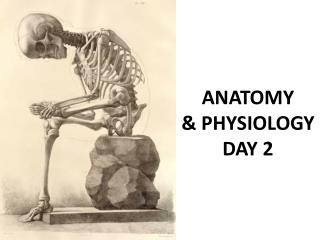 ANATOMY  & PHYSIOLOGY DAY 2