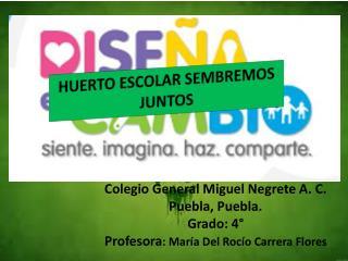 Colegio General Miguel Negrete A. C. Puebla, Puebla. Grado: 4°