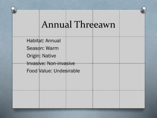 Annual  Threeawn