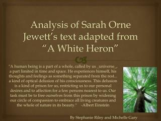 "Analysis of Sarah Orne Jewett's text adapted from ""A White Heron"""