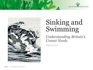 Sinking and Swimming Understanding Britain's Unmet Needs Will Norman