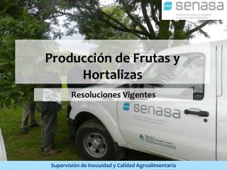 Producción de Frutas y Hortalizas