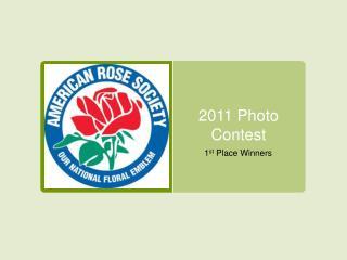 2011 Photo Contest