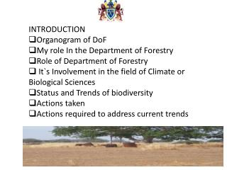 INTRODUCTION Organogram of  DoF My role In the Department of Forestry