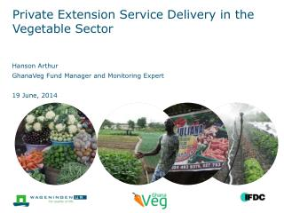 Private Extension Service Delivery in the Vegetable Sector