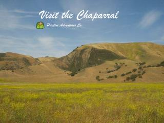 Visit the Chaparral