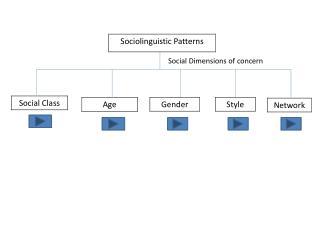 Social Dimensions of concern