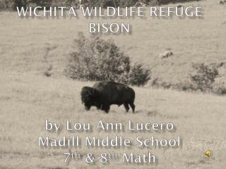 Wichita Wildlife Refuge Bison by Lou Ann Lucero Madill Middle School 7 th  & 8 th  Math