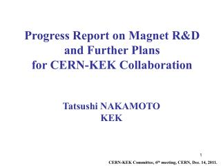 Progress Report on Magnet R&D and Further Plans  for CERN-KEK Collaboration