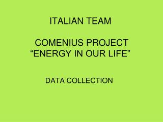 "ITALIAN TEAM  COMENIUS PROJECT ""ENERGY IN OUR LIFE"""