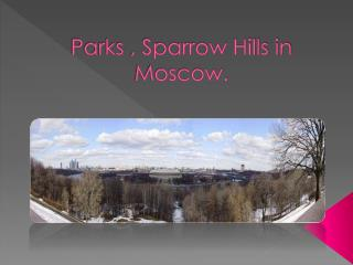Parks , Sparrow Hills in Moscow.
