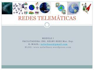 REDES TELEMÁTICAS