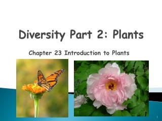 Diversity Part 2: Plants