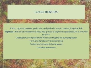 Lecture 10 Bio 325