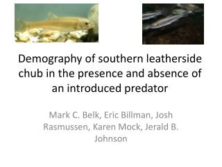 Demography of southern  leatherside chub in the presence and absence of an introduced predator