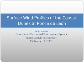 Surface Wind Profiles of the Coastal Dunes at Ponce de Leon