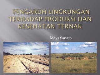 Pengaruh Lingkungan Terhadap Produksi dan Kesehatan Ternak