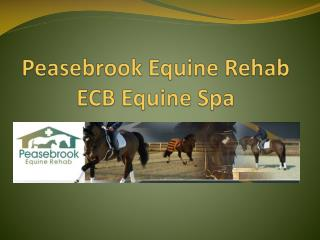 Peasebrook Equine Rehab ECB Equine Spa
