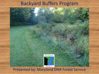 Backyard Buffers Program