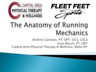 The Anatomy of Running Mechanics