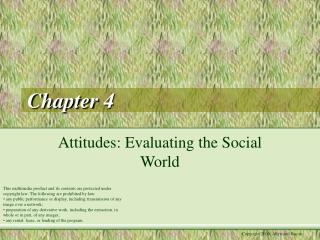 Attitudes: Evaluating the Social World