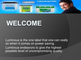 Luminous Inverter Service