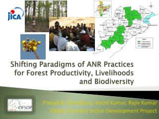 Shifting Paradigms of ANR Practices for Forest Productivity, Livelihoods and Biodiversity