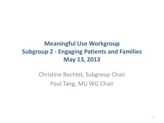 Meaningful Use Workgroup Subgroup 2 - Engaging Patients and Families May 13, 2013