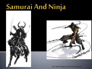 Samurai  A nd Ninja